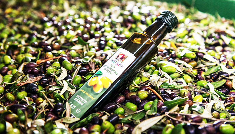 Oliven-Ernte-Ölivenöl